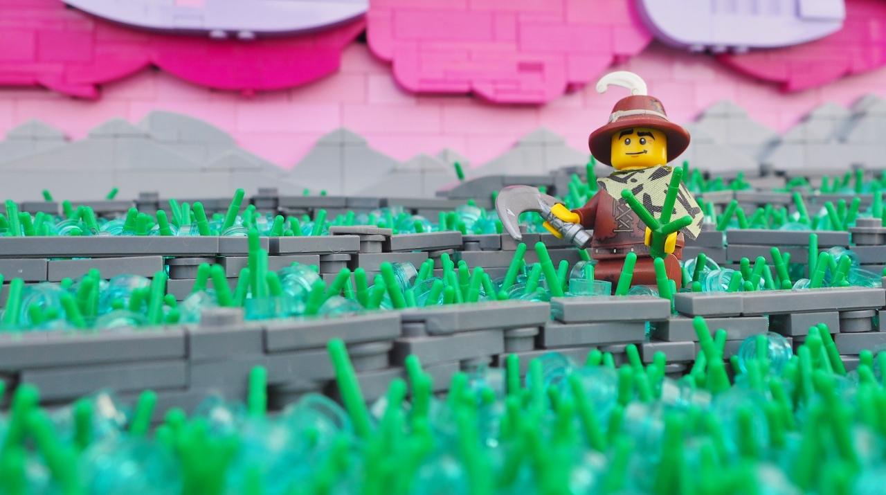 Terraces, Pink (2).jpg